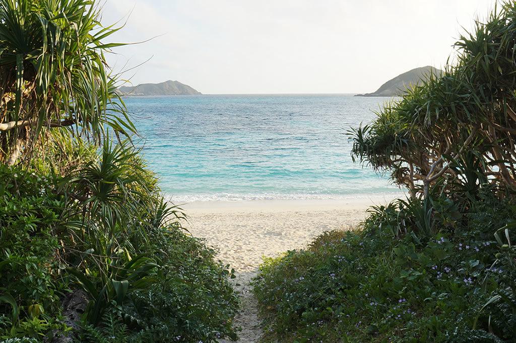 沖縄で五十嵐氏が撮影した海