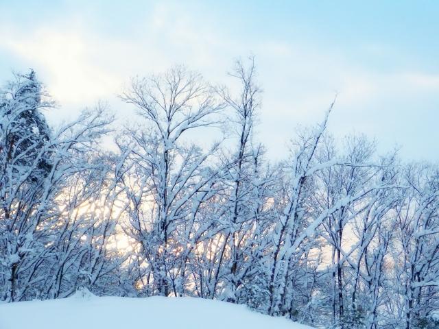 冬のリモートワークはとにかく寒い!